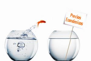 Precios económicos de posicionamiento y promoción