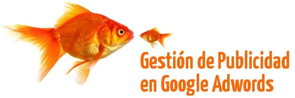 Promoción y posicionamiento en Google Adwords